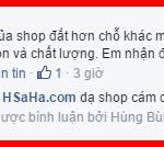 hsaha-bui-van-hung-qua-oc-cho-my-hartley-23